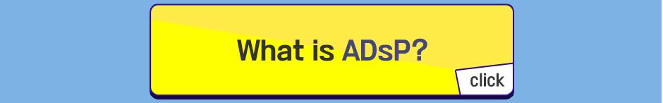 ADsp 데이터분석준전문가 오픈페이지
